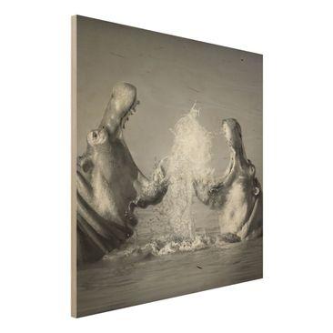 Produktfoto Holz Wandbild - Hippo Fight - Quadrat...