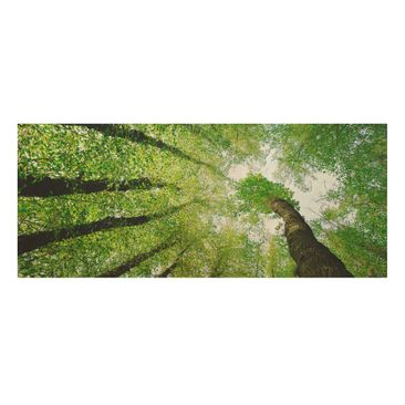 Product picture Wood Print - Trees of Life - Panorama...