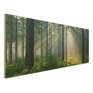 Produktfoto Holz Wandbild - Enlightened Forest - Panorama Quer