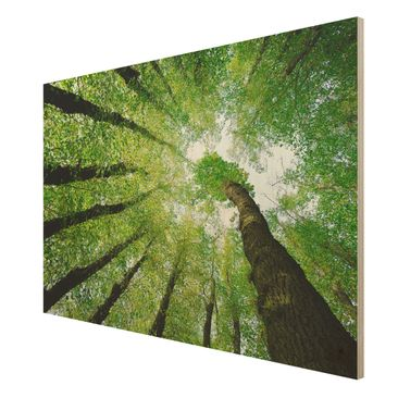 Product picture Wood Print - Trees of Life - Wide 2:3