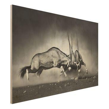 Immagine del prodotto Stampa su legno - Feral Fight -...