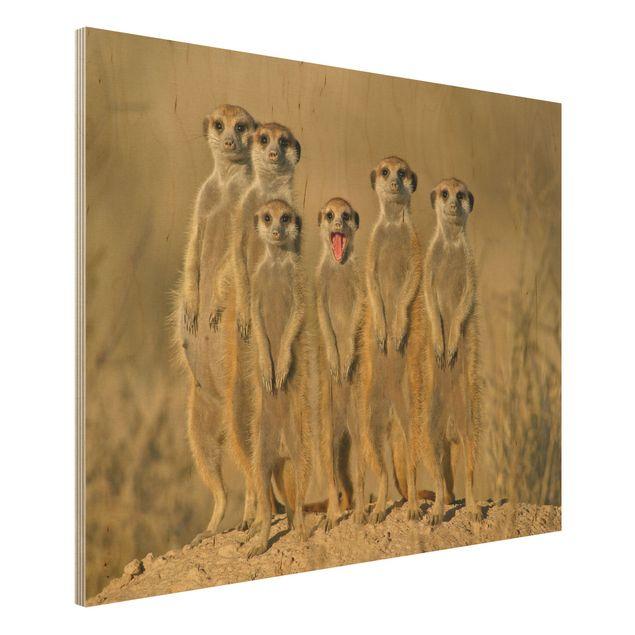 Produktfoto Holzbild - Meerkat Family - Quer 3:4