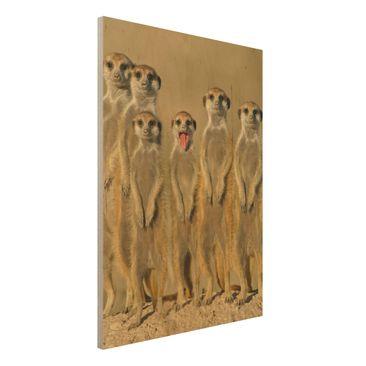 Immagine del prodotto Foto su legno - Meerkat Family -...