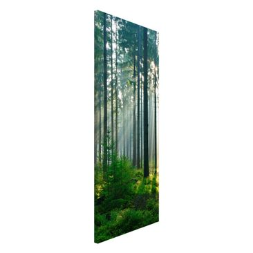 Produktfoto Magnettafel - Enlightened Forest -...