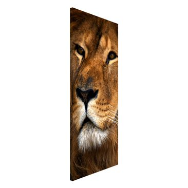 Product picture Magnetic Board - Lions Look - Panorama...