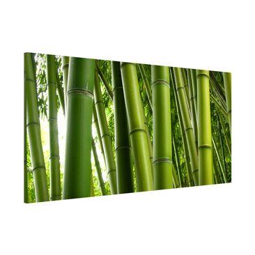 Produktfoto Magnettafel - Bamboo Trees - Memoboard...
