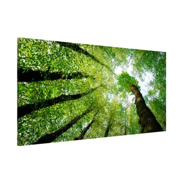 Product picture Magnetic Board - Trees Of Life -...