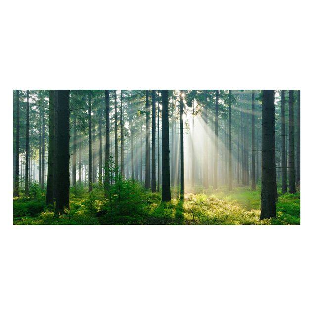 Produktfoto Magnettafel - Enlightened Forest -...