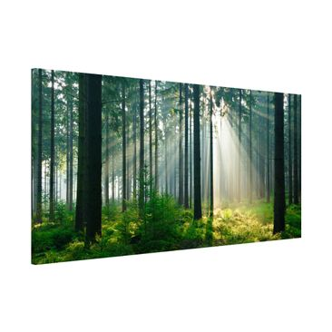 Produktfoto Magnetic Board - Enlightened Forest -...