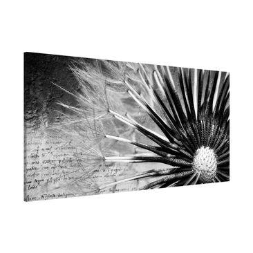 Produktfoto Magnettafel - Pusteblume Schwarz & Weiß - Memoboard Panorama Quer