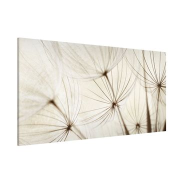 Product picture Magnetic Board - Gentle Grasses -...