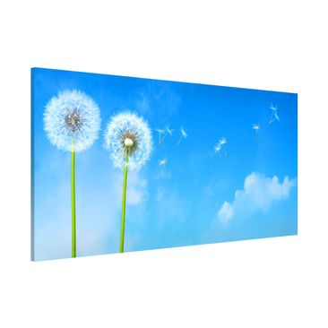 Product picture Magnetic Board - Flying Seeds - Panorama...