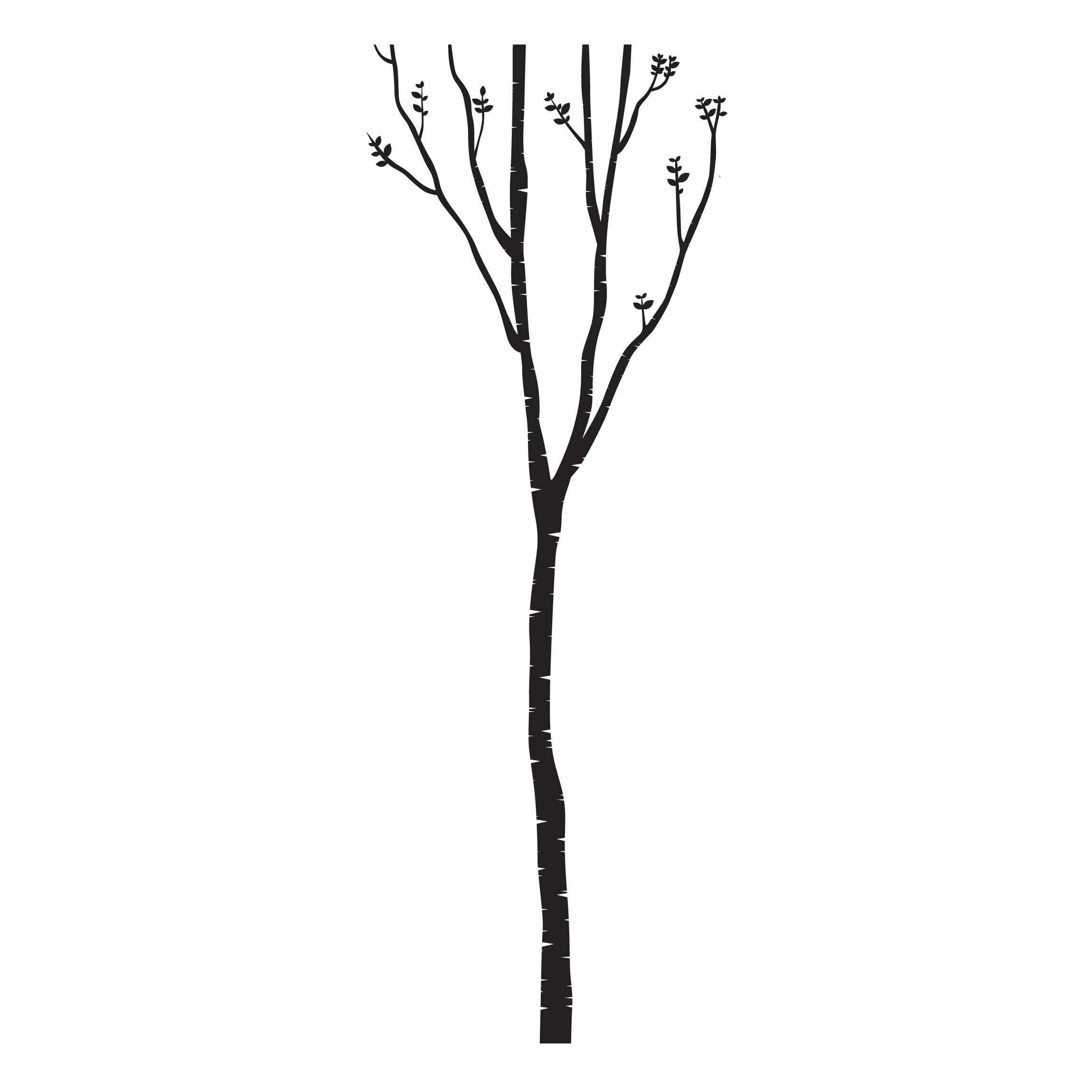 Beeindruckend Wandsticker Baum Ideen Von Produktfoto Wandtattoo - Wandtattoo Birke -.