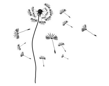 Product picture Wall Decal no.199 dandelion