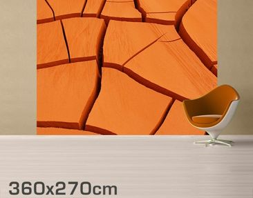 Product picture Photo Wall Mural African Land