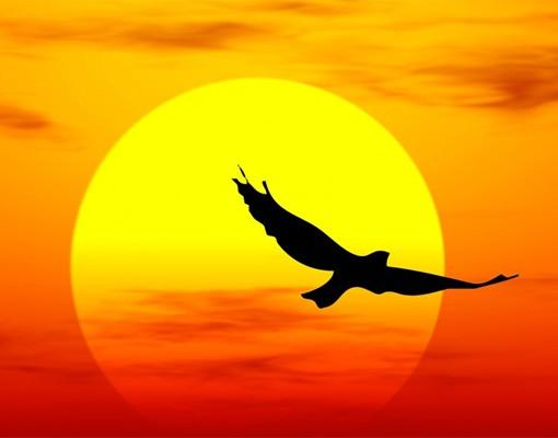 Produktfoto Sonnenuntergang Fototapete selbstklebend - Fabulous Sunset
