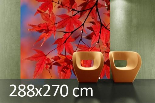 Produktfoto Fototapete Wald - Red Maple - selbstklebende Vinyltapete