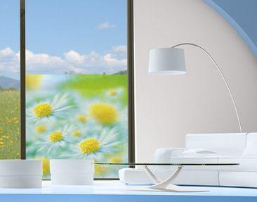 Produktfoto Window Mural Daisy