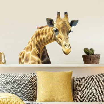 Produktfoto Wall Decal no.21 Prying Giraffe