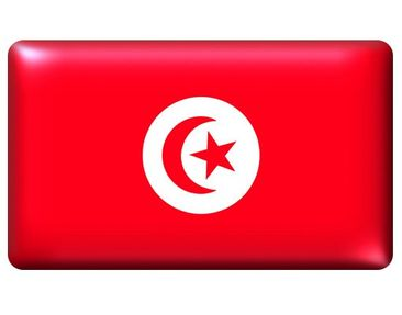 Product picture Wall Mural Flag of Tunisia 2