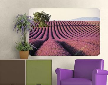 Product picture Wall Mural Lavender
