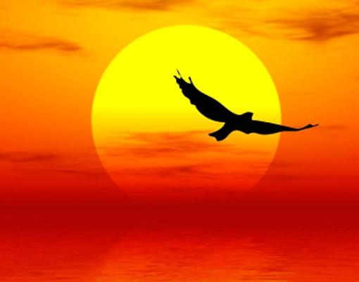 Produktfoto Selbstklebendes Wandbild Fabulous Sunset
