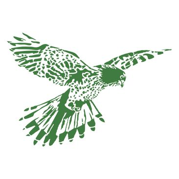 Product picture Wall Decal no.UL240 Falcon