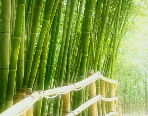 Produktfoto Selbstklebendes Wandbild Bamboo Way