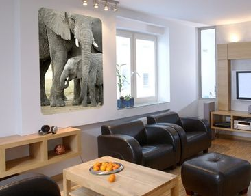 Product picture Wall Mural Elephants in Love