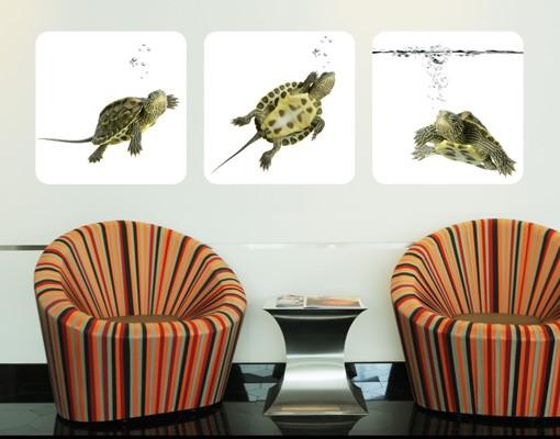 Produktfoto Selbstklebendes Wandbild Turtle Trio