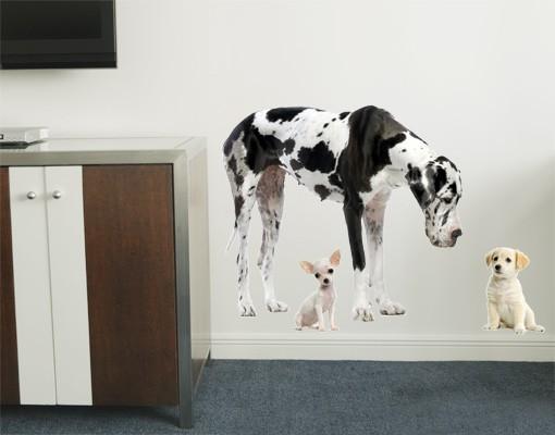 Produktfoto Wandtattoo Hund No.87 Dog Meeting