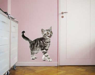 Product picture Wall Decal no.132 Kitty
