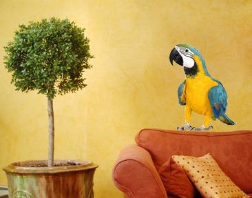 Produktfoto Wall Decal no.134 Macaw