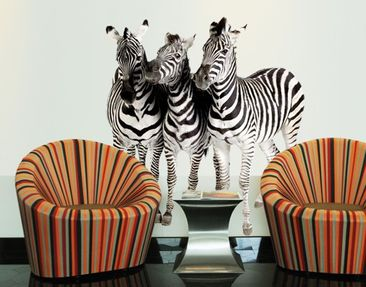 Product picture Wall Decal no.142 Zebras