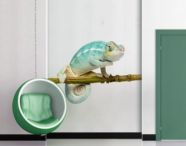 Produktfoto Wall Decal no.151 Blue Chameleon