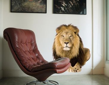 Product picture Wall Decal no.154 Lion II