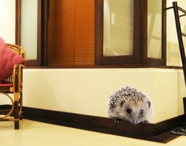 Produktfoto Wall Decal No.156 Little Hedgehog