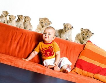 Produktfoto Wall Decal no.158 Lionbaby Set