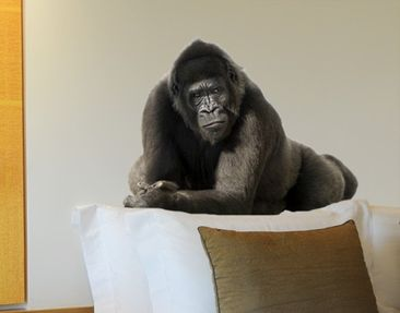 Produktfoto Wall Decal no.159 Gorilla I