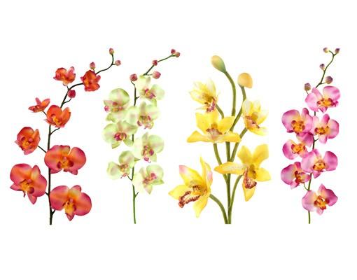 Produktfoto Wandtattoo Orchidee No.182 Orchidee Set I