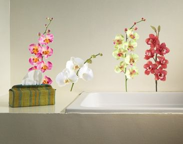 Product picture Wall Decal no.183 Orchid Set II