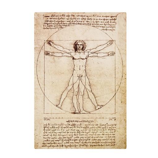 Produktfoto Selbstklebendes Wandbild Da Vinci