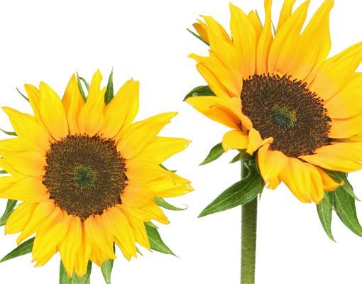 Produktfoto Wandtattoo Sonnenblume No.193 Sonnenblumen