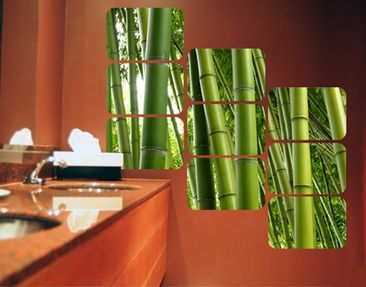Product picture Wall Mural Bamboo Trees Square