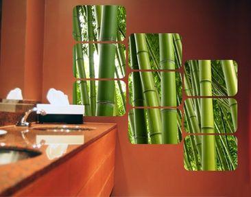 Produktfoto Selbstklebendes Wandbild Bamboo Trees Quadrate