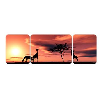Product picture Wall Mural The African Life Triptych