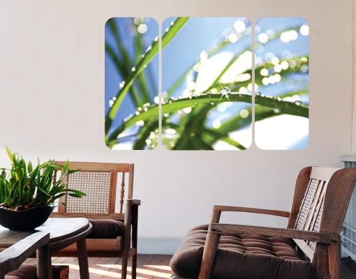 Produktfoto Selbstklebendes Wandbild Kiss of Sun Triptychon II