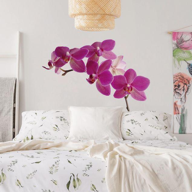 Produktfoto Wandtattoo Orchidee No.SB58 Orchidee II