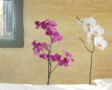 Produktfoto Wandtattoo Orchidee No.SB61 Orchidee Set III