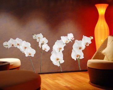 Produktfoto Wandtattoo No.SB60 Orchideen Set IV